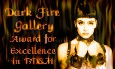 Dark Fire Gallery Award For Excellence: no link available